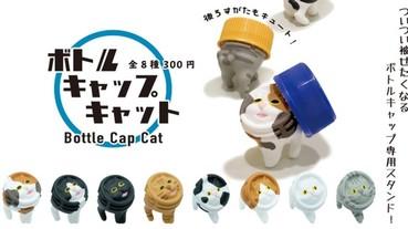 寶特瓶專用的置物架?!超獵奇的「瓶蓋貓咪」扭蛋爆笑登場 網友:「想扭一整排放在桌上」