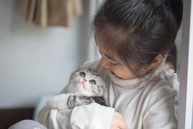 penyakit dari kucing