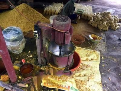 Hải Dương: Phát hiện lưu huỳnh trộn vào củ riềng xay nhỏ gây suy thận, vô sinh người ăn