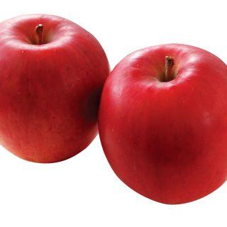 <青森県産他国内産>りんご(サンつがる)