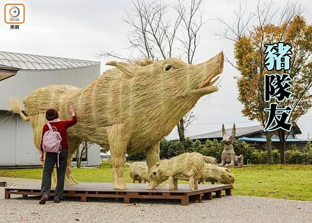 高達4米,長達7.5米的大野豬,是今年小豆島的秋季最新作品。(互聯網)