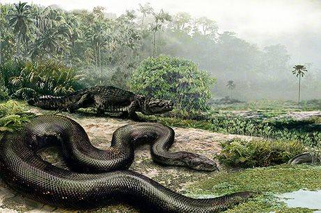 Beratnya Capai 1 Ton, Temui Spesies Ular Raksasa 'Titanoboa' yang Dapat Tumbuh Hingga 15 Meter
