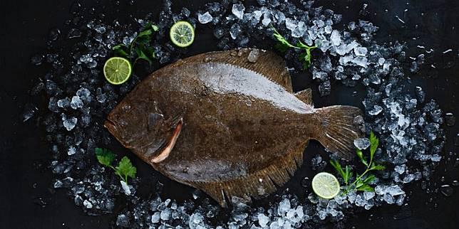 Ikan Turbot pada Pressure Test MasterChef Indonesia, Ternyata Harganya Segini