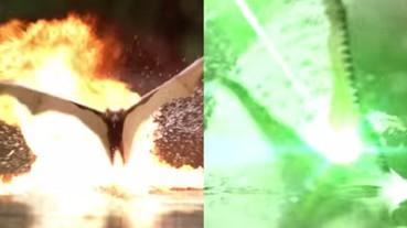 鱷魚 V.S 蝙蝠 加上特效後像是場星際大戰!