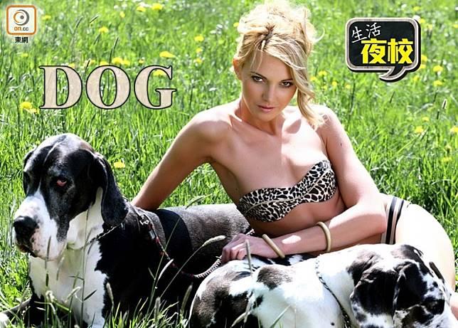 生活夜校:性色字典中的Dog 原來咁解……(互聯網)