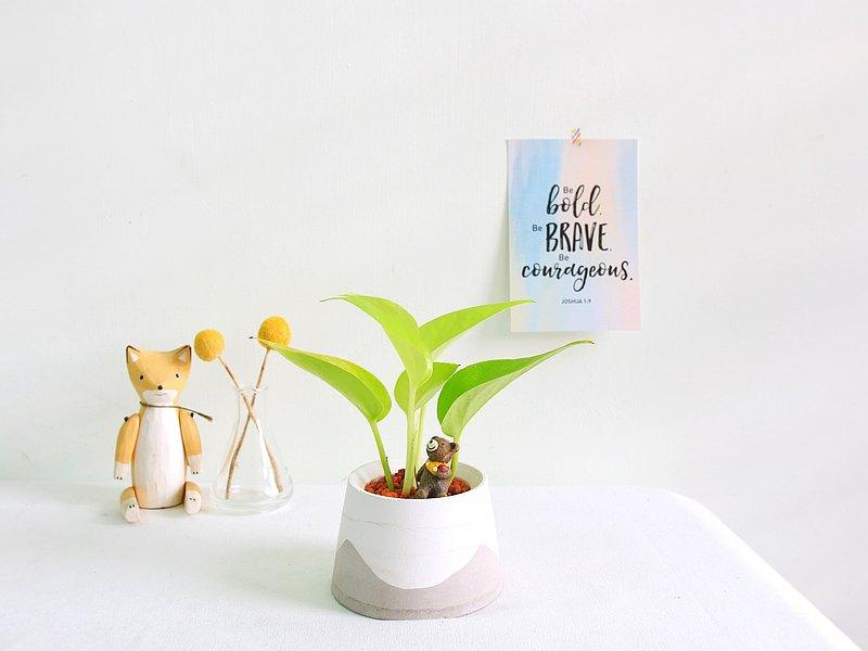 想要您的室內空間裡被療癒嗎?想讓空氣品質更好嗎?室內植栽是您的首選,照顧上得心應手??,搭上可愛的富士山泥盆,更顯得簡單美?