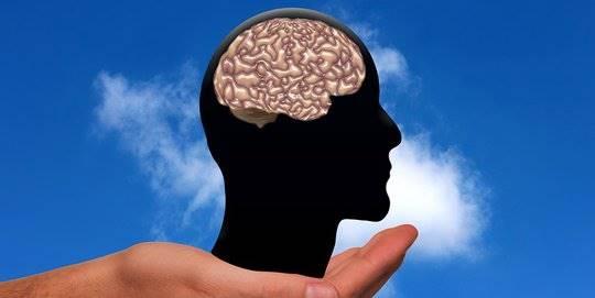 Inilah Beberapa Makanan yang Dapat Merusak Kinerja Otak