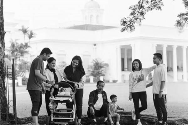 3 Keluarga Jokowi Mendaftar Jadi Calon Kepala Daerah, Siapa Saja?