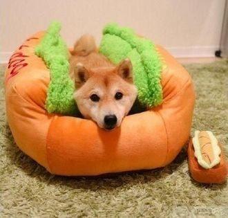 【熱狗貓狗窩】YR23小號 寵物床 寵物墊 貓窩 狗窩熱狗 寵物墊 寵物床 寵物用品