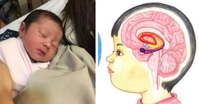 Khoa học chứng minh: Con ngủ ngày đúng cách phát triển IQ và chiều cao vượt bậc