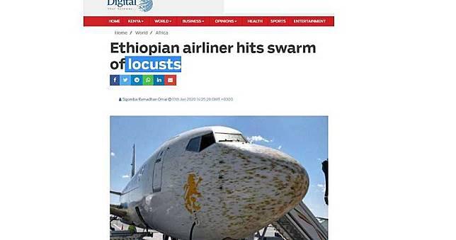 飛機佈滿蟲屍、汁液!東非蝗災來襲 衣國客機緊急降落