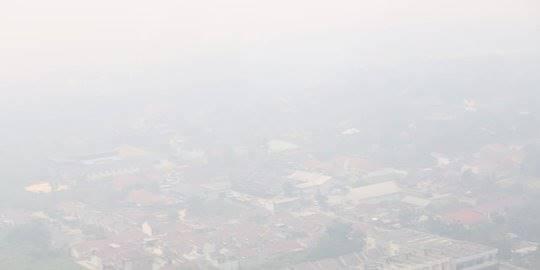 Pandangan Udara Karhutla di Riau. ©2019 BNPB/Istimewa