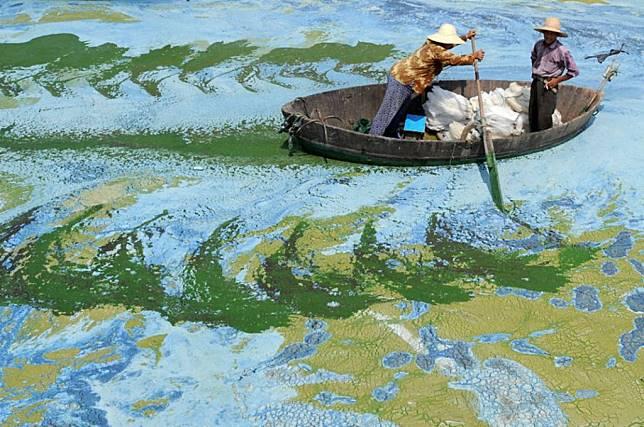 Kumpulan Masterpiece Buatan Alam yang Ngalahin Hasil Karya Seniman