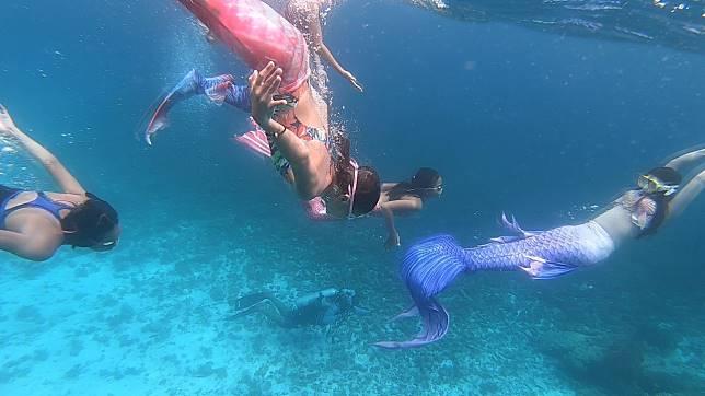 ตลึง…พบนางเงือกดำน้ำเก็บขยะใต้ทะเลและชายหาด ที่หมู่เกาะสิมิลัน จ.พังงา