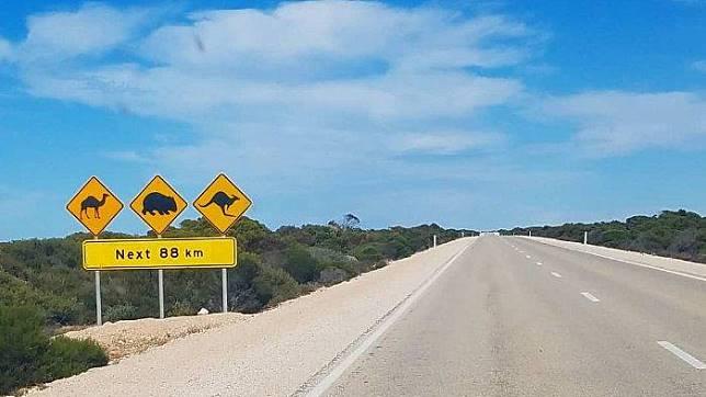 Mengenal Eyre Highway, Jalan Lurus Terpanjang di Australia dengan Pemandangan Indah