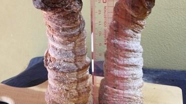 【#又有性暗示】15cm、漏哂白汁......的螺旋麵包