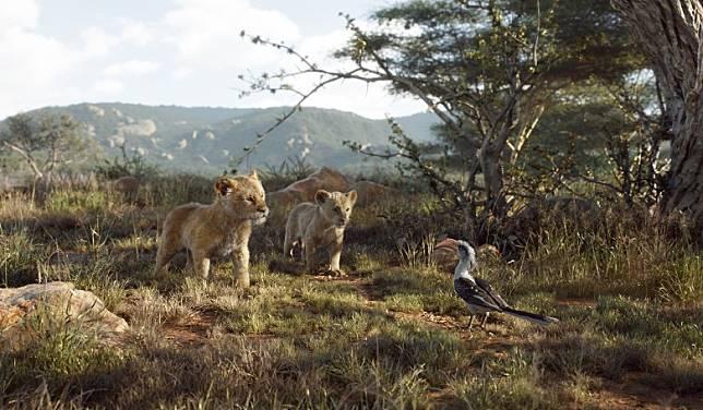 攝製隊遠赴非洲肯尼亞進行資料搜集,一草一木幾可弄真。(互聯網)