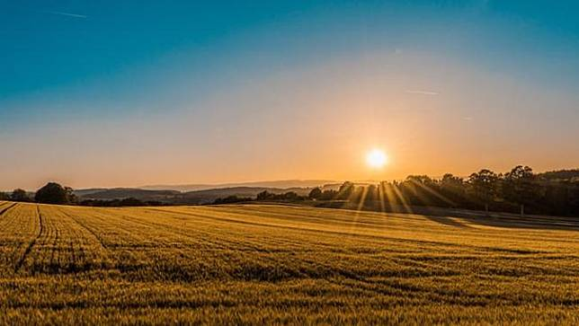 Ilustrasi Matahari Terbit, Sunrise