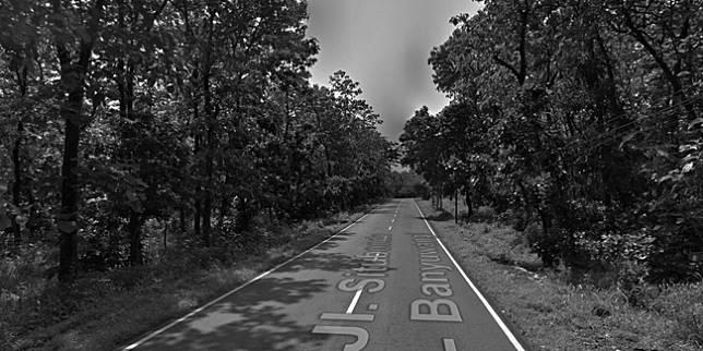 Alas Baluran (Google Street View)