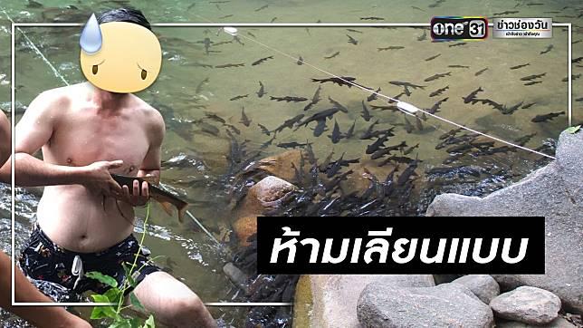 จวกเละ! นทท.เที่ยวน้ำตกพลิ้ว จับปลาพลวงขึ้นจากน้ำถ่ายรูป