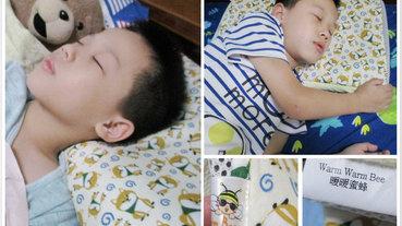 (兒童枕頭推薦)【暖暖蜜蜂】|多功能 [春夏/秋冬]兩用3D竹炭纖維透氣枕套(附科技乳膠枕)!!!