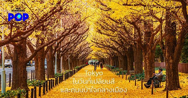 Tokyo ในวันที่เปลี่ยนสี และถนนป่าใจกลางเมือง