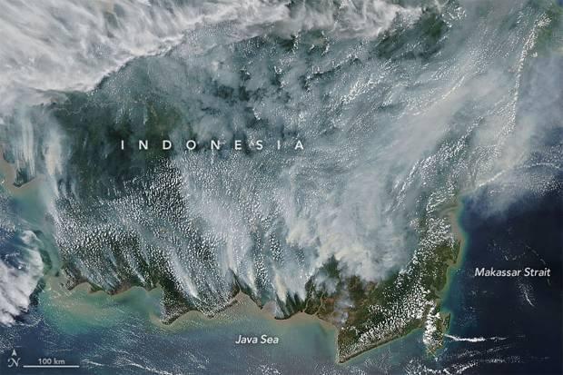 Potret Kebakaran Hutan di Indonesia, NASA Katakan Ini Bahayanya