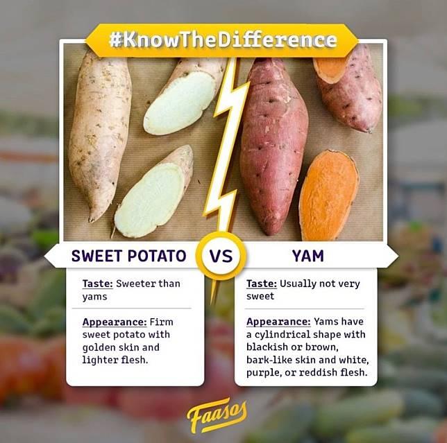 提起番薯及甘薯,好多人都不知道兩者的分別。(互聯網)