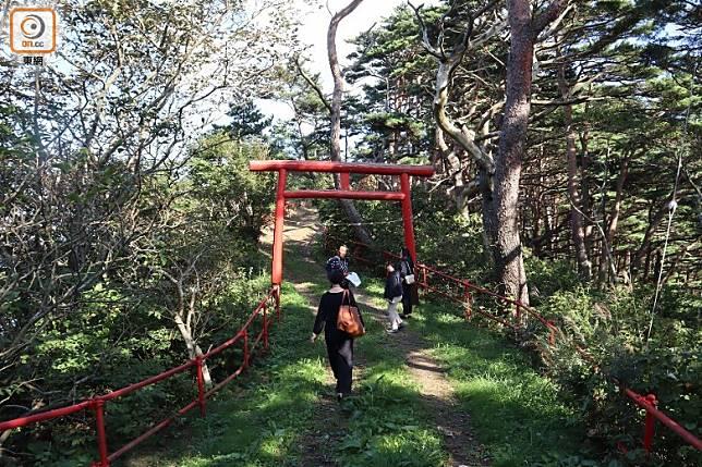 侍濱海岸路線,全程步行約2.5小時,整段路難度不高。(劉達衡攝)