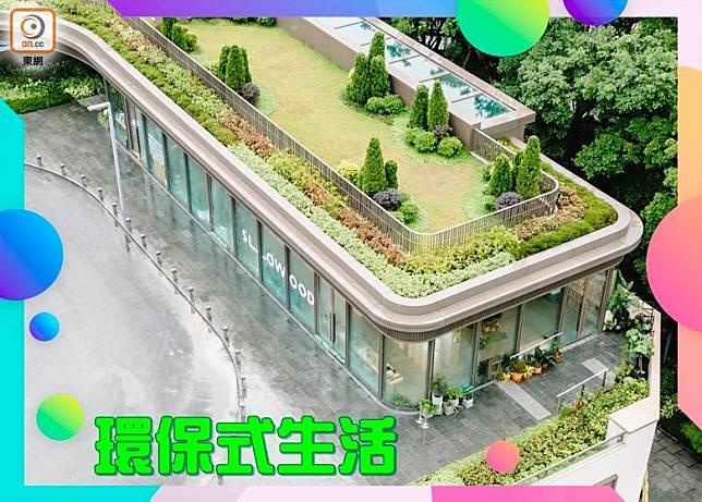 面積約2,500平方呎的新店,擁有倘大的玻璃窗,日光可投入店內,與店主主張環保、愛護大自然的理念互相配合。( 互聯網)