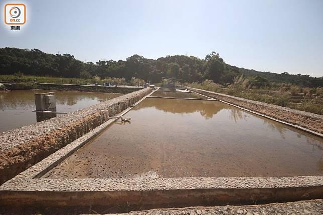 訪客可以看到最傳統的曬鹽方法,及了解更多有關鹽田的歷史及資訊。(盧展程攝)