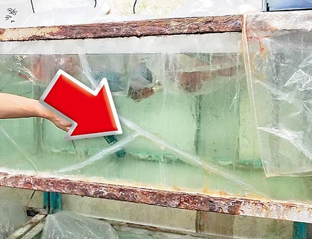 魚缸被震裂需要修補(箭嘴示)。