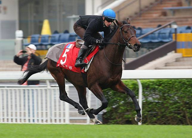Antoine Hamelin on life as a quarantined jockey and the split-second decision that landed him in Hong Kong