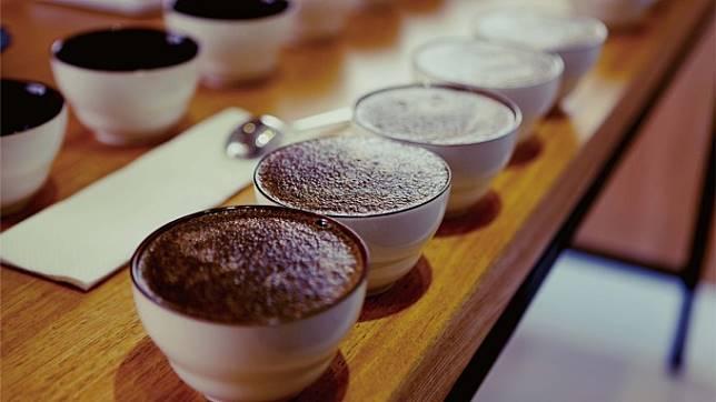 金鑛咖啡宣布轉型上游原料咖啡豆供應 門市是否結束營業引矚目