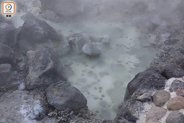 近看在溫泉水面,更時不時會看到像花狀的結晶「湯之花」。(劉達衡攝)
