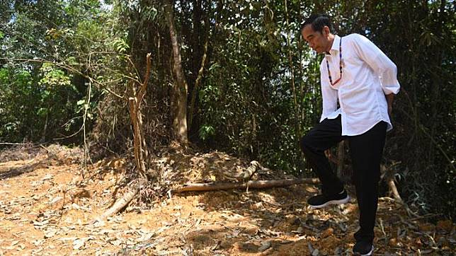 President Joko Widodo visits the forest area of Gunung Mas, Central Kalimantan, Wednesday, May 8, 2019. ANTARA/Akbar Nugroho Gumay