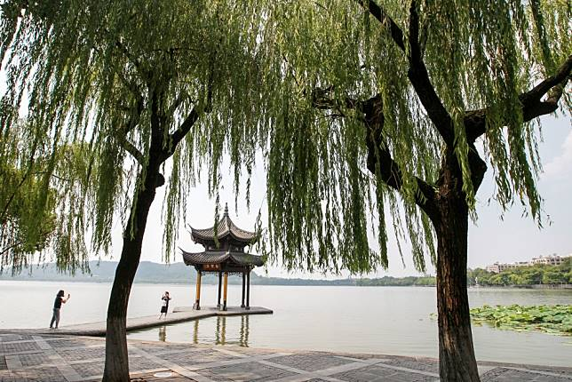Chinese tourist grabs and hurts mandarin ducks at revered beauty spot