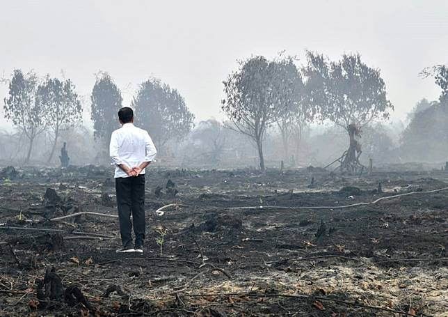 Indonesia needs to get tougher on fires