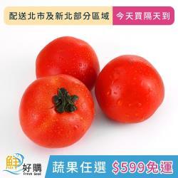 【鮮好購X蔬果任選$599免運】牛番茄500g±10g/包