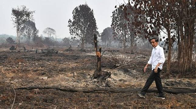 Presiden Jokowi pantau kebakaran hutan. (Biro Pers Kepresidenan)