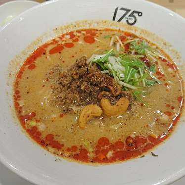 実際訪問したユーザーが直接撮影して投稿した西新宿ラーメン・つけ麺175 DENO担担麺 TOKYOの写真