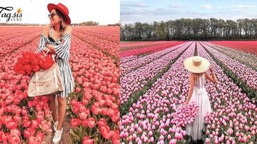 人生旅遊checklist!荷蘭小鎮的絕美「鬰金香花海」,感受最華麗的浪漫情懷〜
