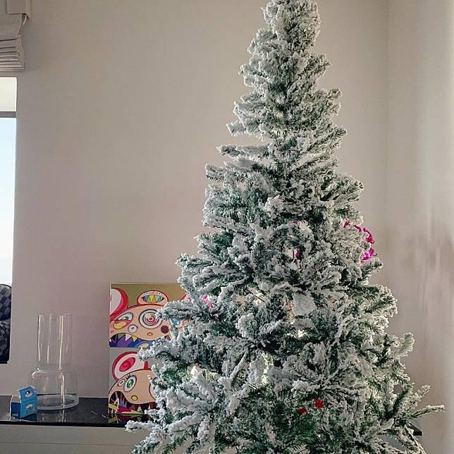 已經擺咗聖誕樹喇!