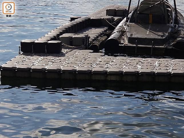有魚擱淺在水警基地的浮台設施上。(趙瑞麟攝)