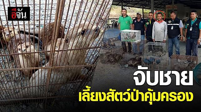 ตำรวจ ปทส. จับชายชาวตรัง เลี้ยงสัตว์ป่าเต็มบ้าน