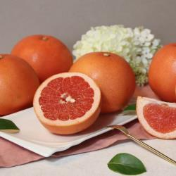 ◎平均甜度10-12度,香氣優雅|◎果實圓潤,果肉飽滿,香甜多汁|◎嚴選產地,自然好風味品牌:永齡有機/選物類型:水果蔬菜種類:蕃茄水果種類:葡萄柚食用方式:收到後,將果實冷藏保存,可延長最佳賞味期重