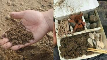 吃土可以減肥?!研究:泥土有助阻隔及排走脂肪