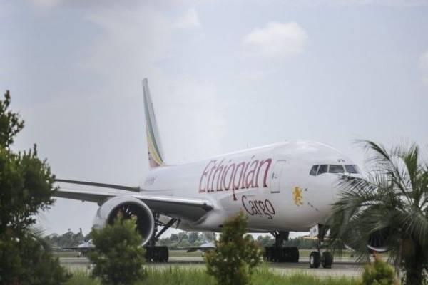 Pesawat Ethiopian Airlines Jatuh, 149 Penumpang Diduga Tewas