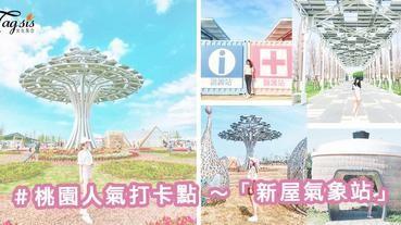 桃園人氣打卡點!「新屋氣象站」~ 粉粉貨櫃、生命樹、電鍋 ... 拍照位超!級!多!