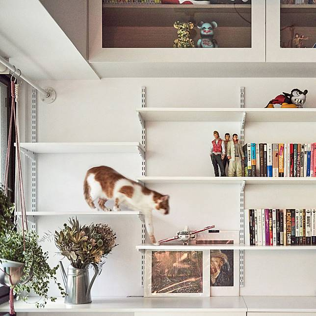 loft-h-st-studio-house-architecture-for-cats_dezeen_1704_col_6